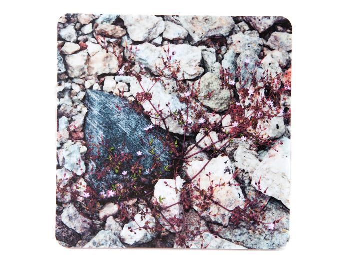 Underlägg: Öland – Stenar och näva